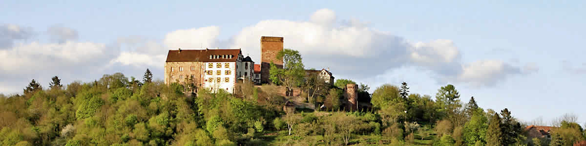 Gamburg in Werbach